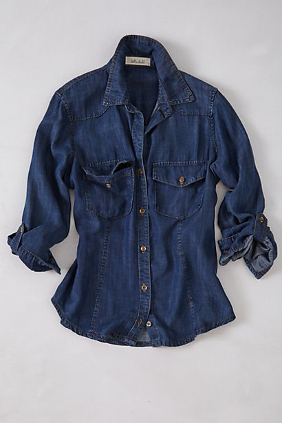 anthropolgie chambray